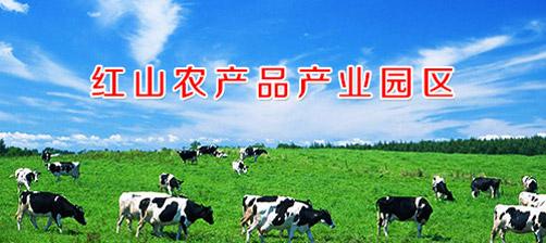 红山农产品产业园区