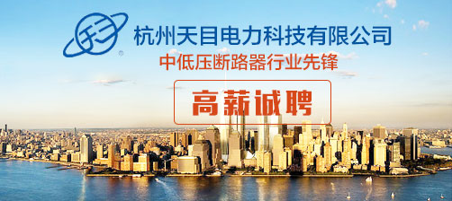 杭州天目电力科技有限公司