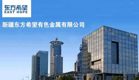 新疆东方希望有色金属有限公司招聘信息