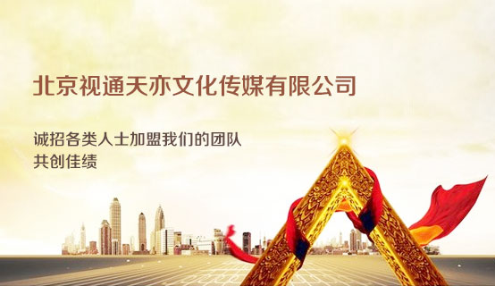 北京视通天亦文化传媒有限公司