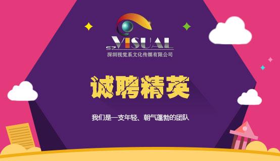 深圳视觉系文化传媒有限公司