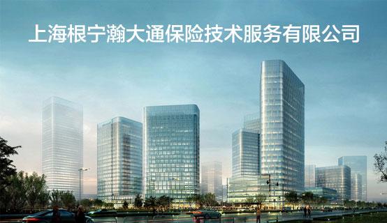 上海根宁瀚大通保险技术服务有限公司