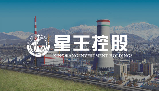 陕西星王企业集团有限公司