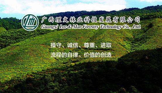 广西理文林业科技发展有限公司
