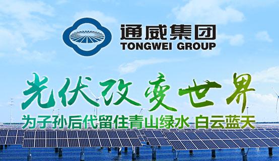 通威太阳能(合肥)有限公司