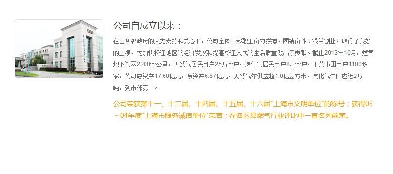 上海松江燃气有限公司