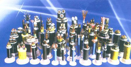 上海辰茂电线电缆有限公司