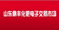 山东鼎丰化肥电子交易市场有限公司