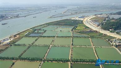 4,百幅手绘图解读扬州水利工程史 2500年 大运河经历10次变迁