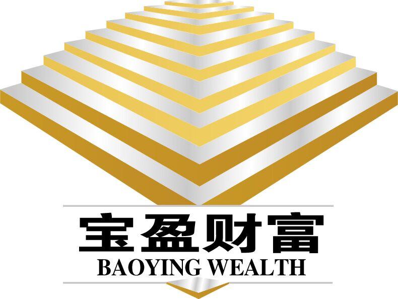 青岛宝盈财富商贸有限公司天津分公司