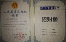 著名商标证书.jpg