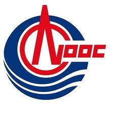 中海油新能源投资有限责任公司