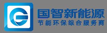 上海国智新能源有限公司