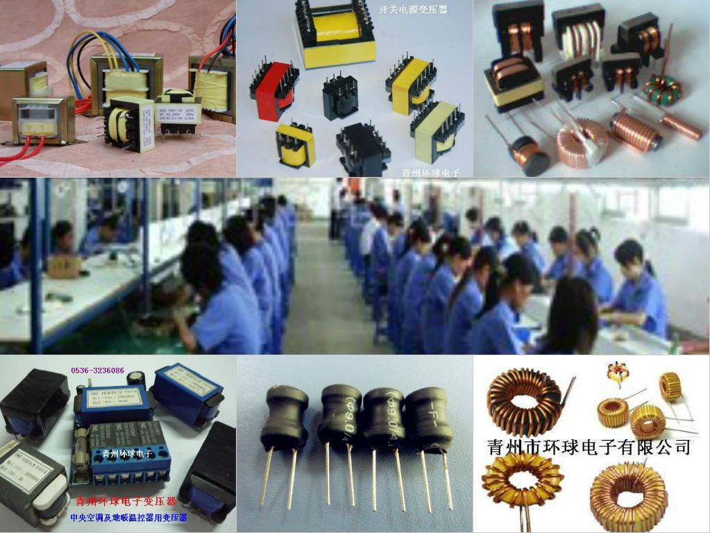 青州环球电子有限公司