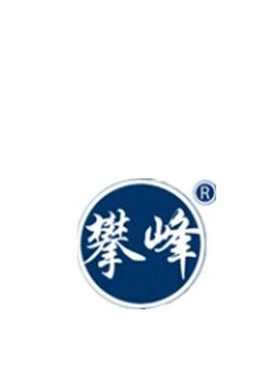 山东省博兴县攀峰电机有限公司