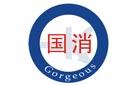 广西国杰斯消防科技有限公司