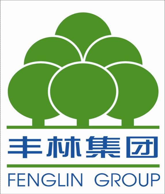 广西丰林木业集团股份有限公司