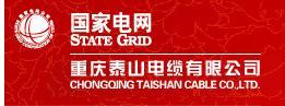 重庆泰山电缆有限公司
