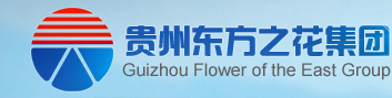 贵州东方之花实业有限公司