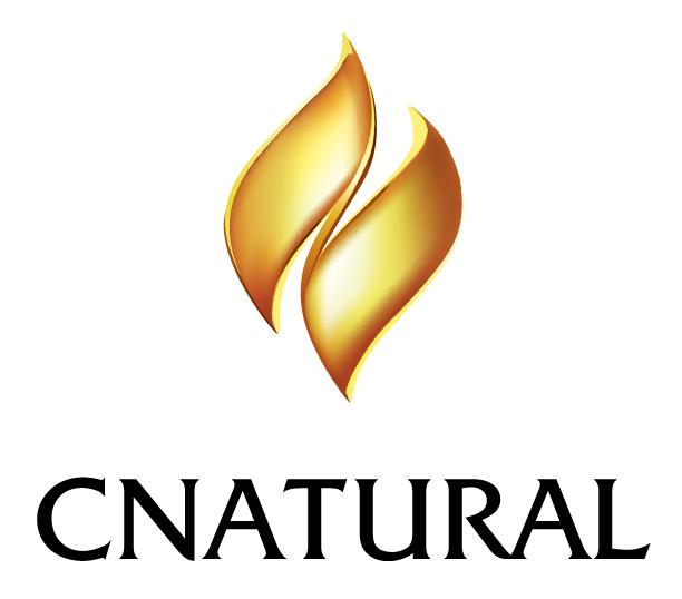 新疆天然能源集团有限公司