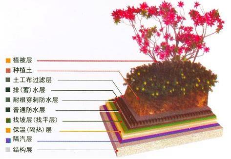 种植屋面防水工程的施工的步骤