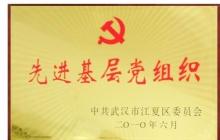 201006 区先进基层党组织.jpg