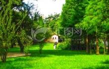 园林4.jpg