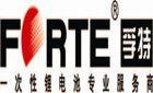 武汉孚特电子科技有限公司