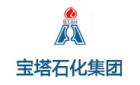 北京宝塔油气投资有限公司