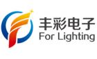 深圳市丰彩电子有限公司