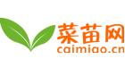 上海菜苗网络科技有限公司
