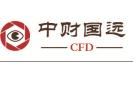 中财国远(北京)财经顾问有限公司