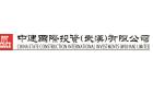 中建國際投資(武漢)有限公司
