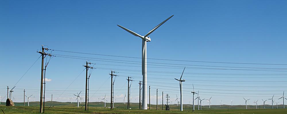 电力投资有限公司合资组建,坐落于青岛市董家口经济区青钢集团产业园.