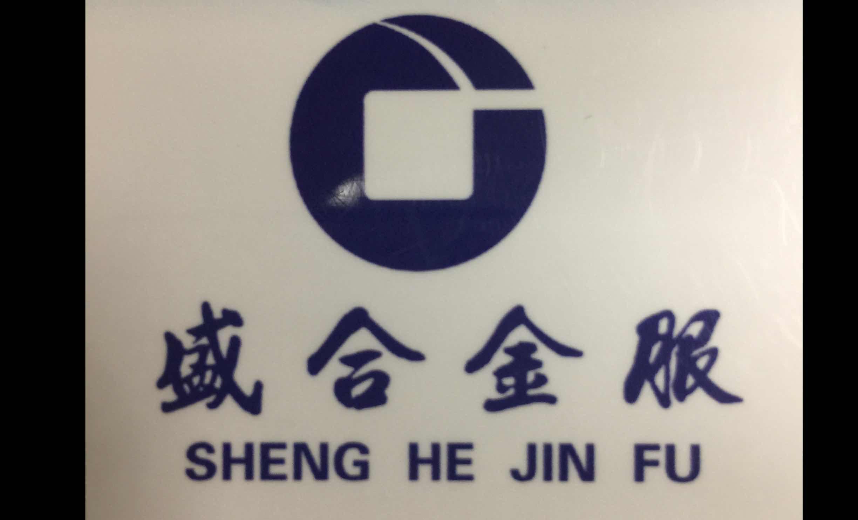 广州盛合投资担保有限公司